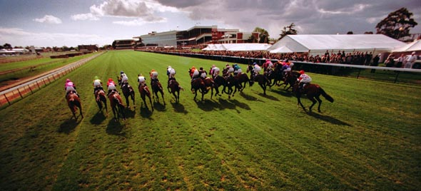 Caulfield Cup race start, 1996. Photograph by Craig Sillitoe/The Sunday Age