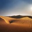 jalsaimere-desertb