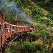 train-ride-through-the-hills-of-sri-lanka-final
